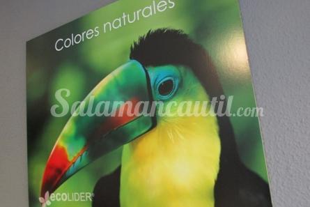 Ecolider Salamanca Fotos